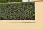 Muttaburra Decorative fencing 30